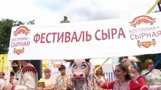 """""""Фестиваль сыра"""" в Костроме : """"витрина"""" для производителей, праздник для гостей"""