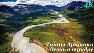 Тайны Арктики / Arсtic Secrets (2016) S01E04 Осень в тундре / Fall on the Tundra          ВИДЕО 4K