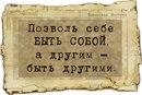 Фотоальбом Алёны Шелдыбаевой