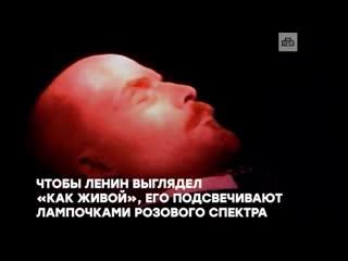 Познавательный ролик НТВ о том, каким образом Ильичу удается оставаться живее всех живых