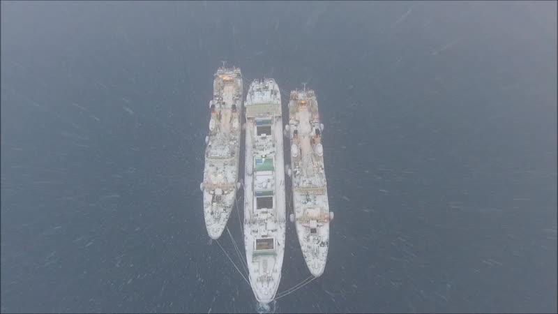 Охлаждающее видео от рыбаков с Охотского моря