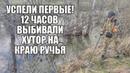 12 ЧАСОВ ВЫБИВАЛИ ХУТОР НА КРАЮ РУЧЬЯ! Поиск золота с металлоискателем / Russian Digger