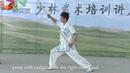 Shaolin Yin hand Stick 9