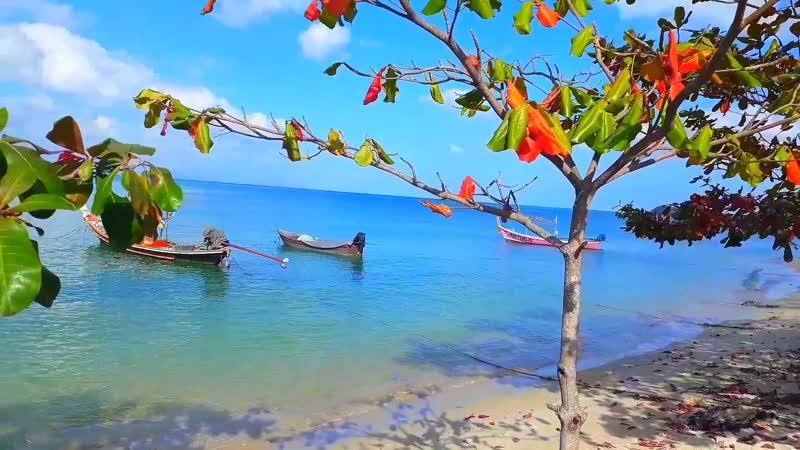 Самуи 🏝 – сердце 💙 южной части Сиамского залива Тихого океана 🌊️💦