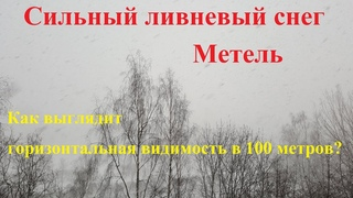 Сильный ливневый снег и метель в Санкт Петербурге / видимость 100 метров /  года (Full HD)