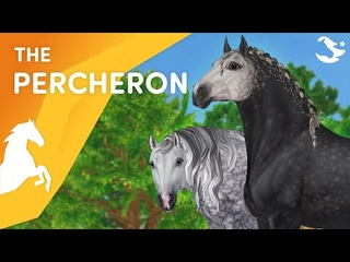 Meet the Percheron!💪😎❤️ | Star Stable Breeds