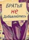 Фотоальбом Мадины Шамиловой