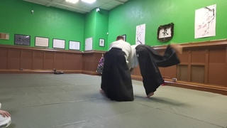 Three styles of performing arts in Ki-Aikido_2