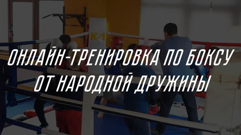 Онлайн тренировка по боксу от Народной Дружины
