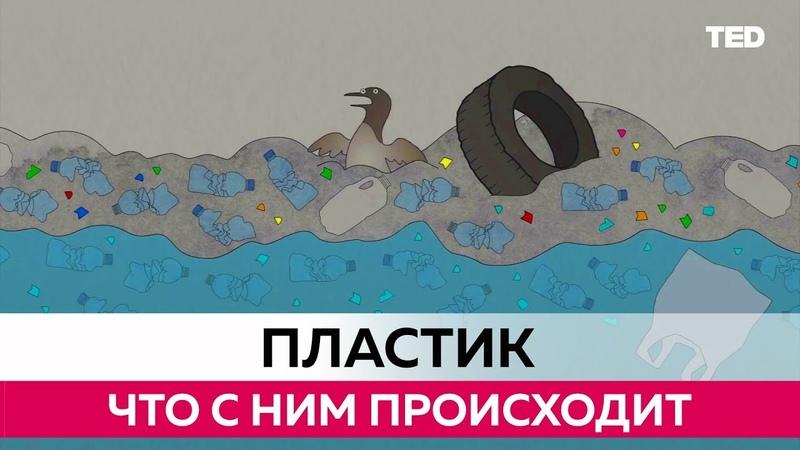 Что происходит с Пластиком который мы выбрасываем TEDed на русском