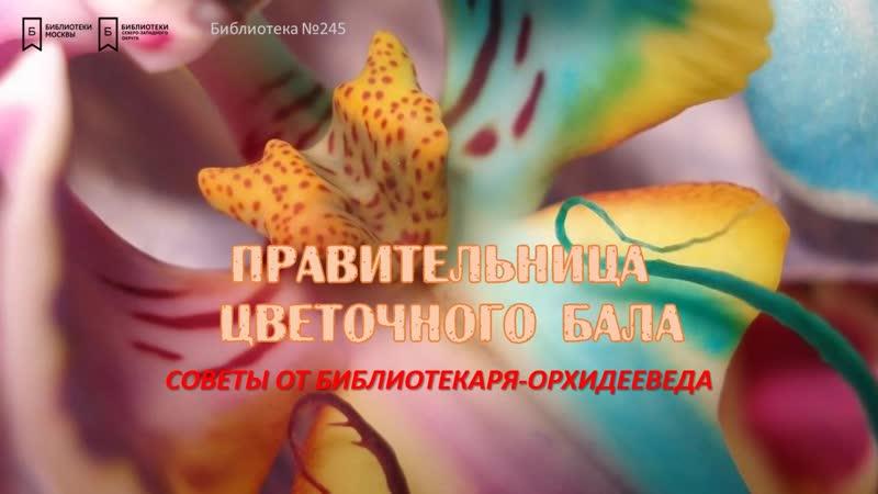 Правительница цветочного бала Советы от библиотекаря орхидееведа