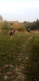 Есть что-то в осени 🍂🍁 #прогулки #конный_двор_Хутор