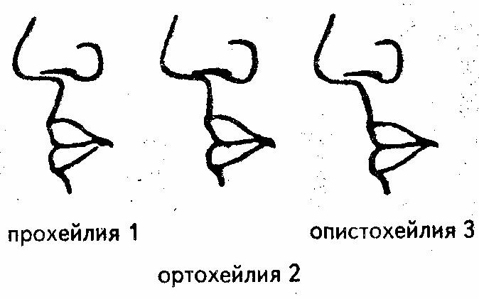 Губы и область вокруг рта., изображение №9