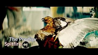 The Prodigy - Spitfire (Бриллиантовая Рука) (Vikentiy Sound Clip) (2018)
