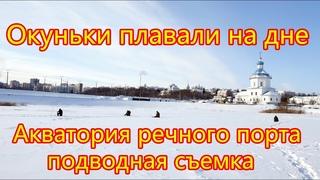 Окуньки были сытые и клевали не охотно Холодает Акватория речного порта Чебоксары 21 02 2021