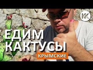Симеиз. ЕДИМ крымские КАКТУСЫ. Самый длинный подвесной крымский мост! Крым