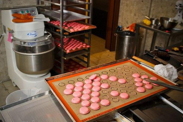 БИЗНЕС-ИДЕЯ: Изготовление макарун