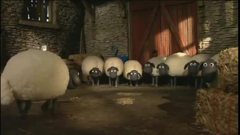 Барашек Шон S1E20 - Стрижка _ Shaun the Sheep - Fleeced