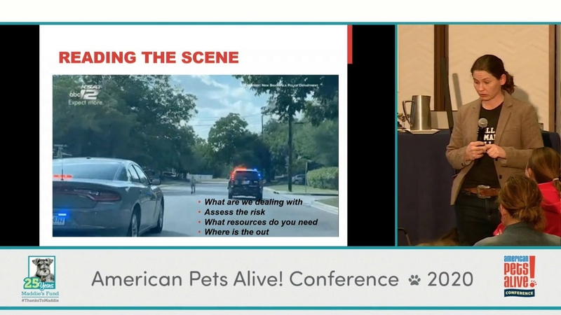 Гуманное обращение со страшными и капризными дикими животными и животными-компаньонами / ACOs Gone Wild: Handling Fearful and Fractious Wildlife and Companion Animals - conference recording