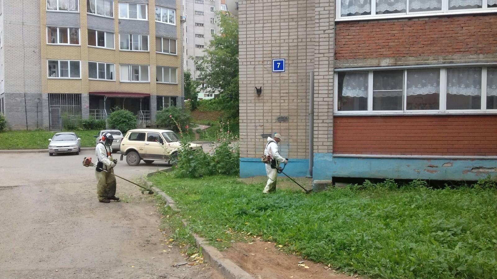 Ул. Менделеева, 7. Кошение газонов.