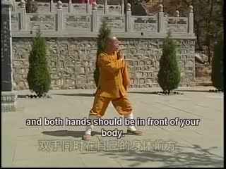 Shaolin Kung Fu small Luohan 18 Hands read description