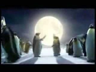 Coca Cola Christmas Commercial - Polar Bears