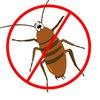 Служба дезинсекции, уничтожение клопов/тараканов