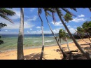 Perfect Palms Hidden Island in Fiji Endless Nature Video w Stereo Sounds 1080p