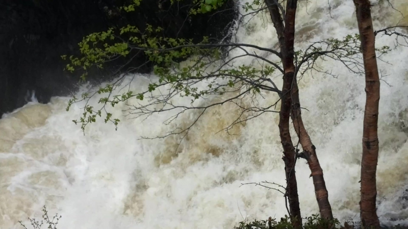 Водопад Шуонийоки