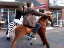 Детские механические лошадки PONYCYCLE поницикл