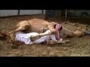 Funny Arab Public Bomb Scare Prank Videos Compilation Funny Scare Prank 2016