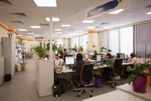 полевые контр- офис компании ригла фото самых первых