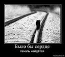 Фотоальбом Димы Суринта