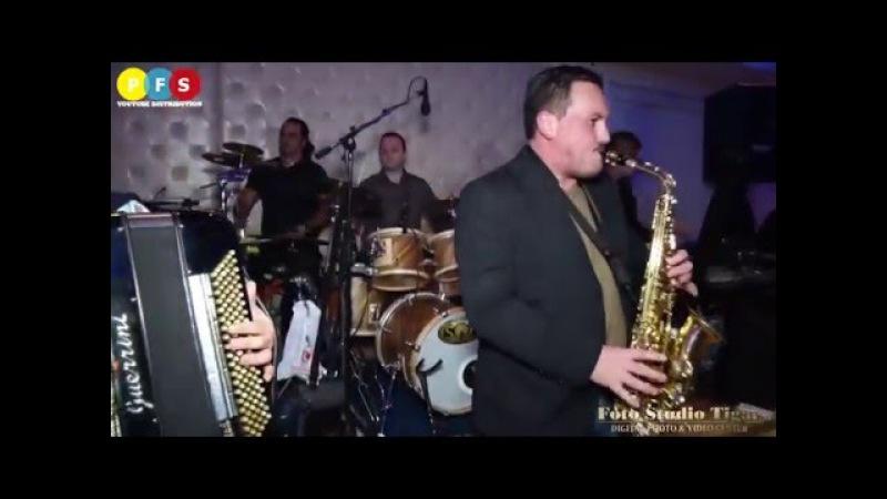 Borko Radivojevic i TIGROVI Mix Muzicka zabava Nis 2016