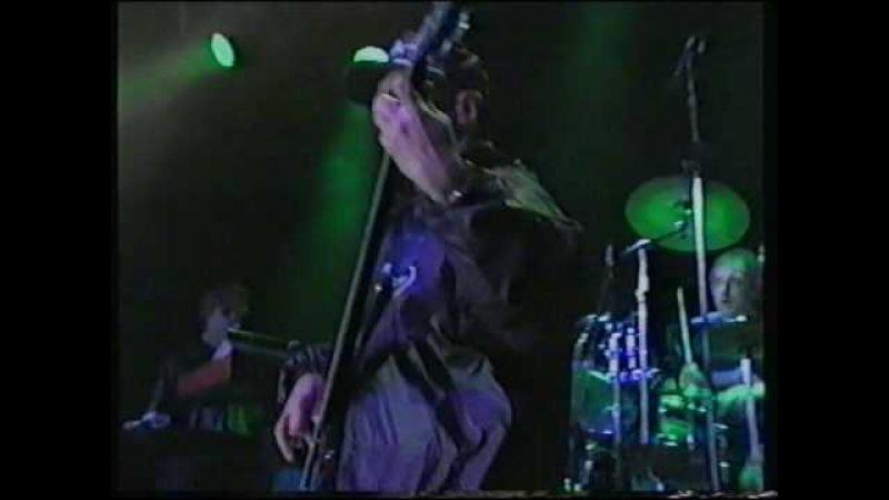 Falco Ganz Wien live in Wiesen 1996 mit Drahdiwaberl