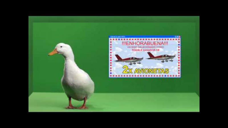 Liberad al Pato Willix Publicidad falsa