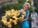ЛИЛИЯ САЛТАРЕЛЛО ГИБРИДЫ ОТ ЧУДО Выращивание уход посадка полив болезни цветение