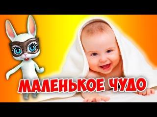Мое маленькое чудо! Суперская песня переделка попурри ZOOBE Муз Зайка