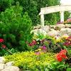 Озеленение и благоустройство в Астане