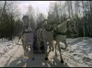 Три белых коня (1982) Лариса Долина