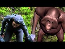 Dawn of the Planet of the Apes Behind the Scenes Clip EXCLUSIVE TO STACK