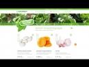 Создание дизайна-концепции сайта-каталога производителя сельхозпродукции в Киргизии