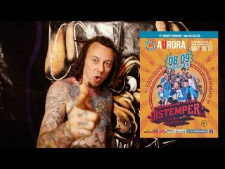 Distemper - приглашение на концерт в Санкт-Петербурге