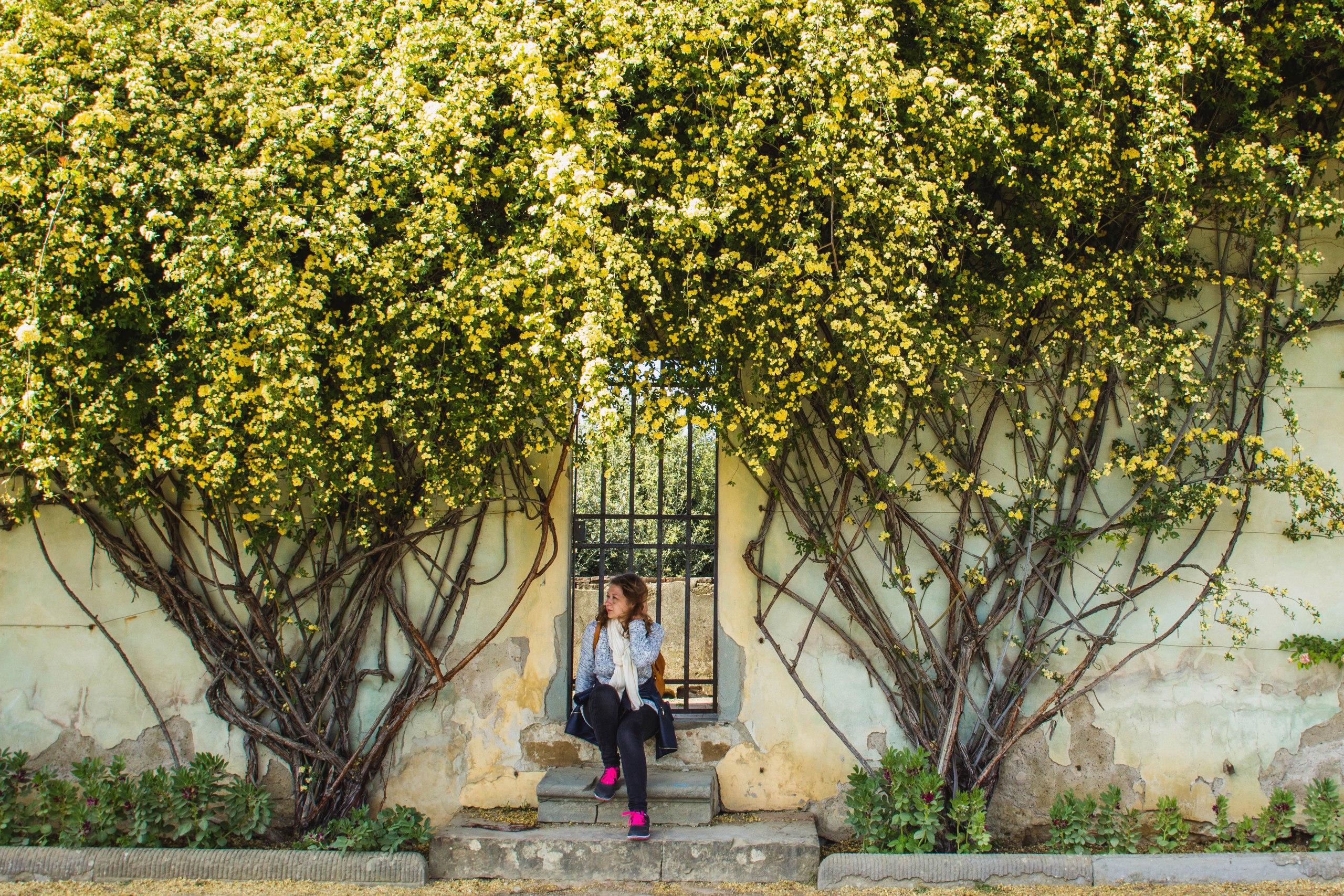 Это в садах Боболи во Флоренции