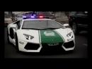 Mozgi - За Нами Едут Полицаи