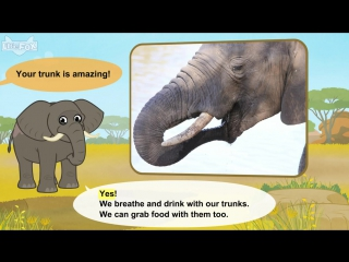 Meet the animals 19- african elephant - level 2 - by little fox