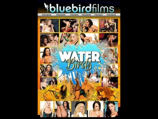 Waterbirds / water birds (bluebird films) [2017 г., big boobs, facial cumshot, fetish, lingerie, foursome, piercing, fishnet, hd