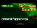 ДИМАШ DIMASH Беловежская Пуща с точки зрения китайцев Bialowieza Forest Chinese version