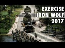 Exercise Iron Wolf NATO battlegroups train together in Lithuania