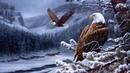 Birds_in_Flight.mp3